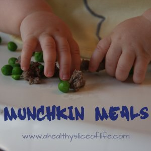 munchkin-meals-large